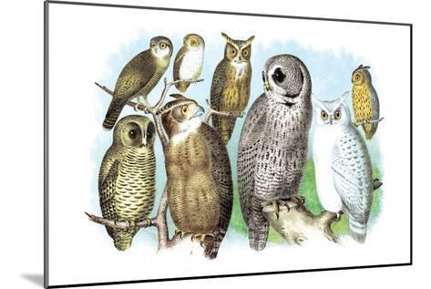 Hoot of Owls-Theodore Jasper-Mounted Art Print