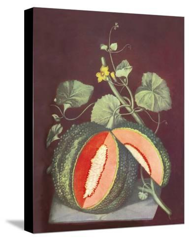 Watermelon--Stretched Canvas Print