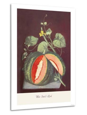 Watermelon--Metal Print