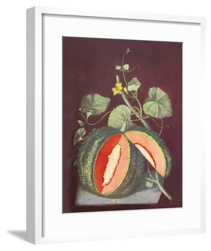 Watermelon--Framed Art Print