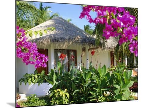 Hotel Accommodation, Baros, Maldive Islands, Indian Ocean-Robert Harding-Mounted Photographic Print