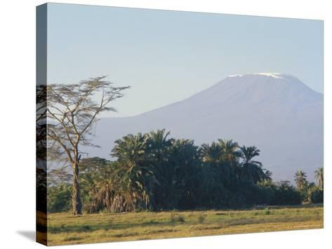 Mt. Kilimanjaro, Amboseli, Kenya, Africa-Robert Harding-Stretched Canvas Print