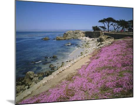 Carpet of Mesembryanthemum Flowers, Pacific Grove, Monterey, California, USA-Geoff Renner-Mounted Photographic Print