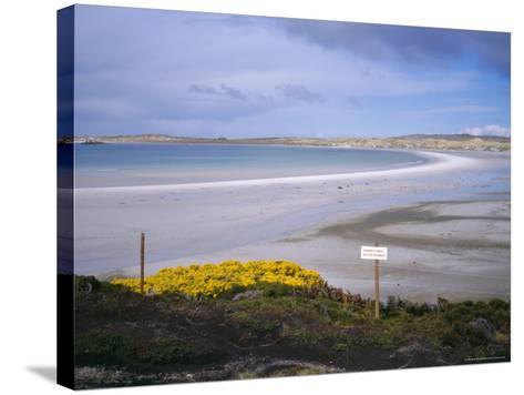 Mined Beach from the Falkland War, Near Stanley, Falkland Islands, South America-Geoff Renner-Stretched Canvas Print