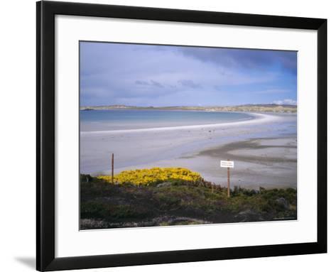 Mined Beach from the Falkland War, Near Stanley, Falkland Islands, South America-Geoff Renner-Framed Art Print