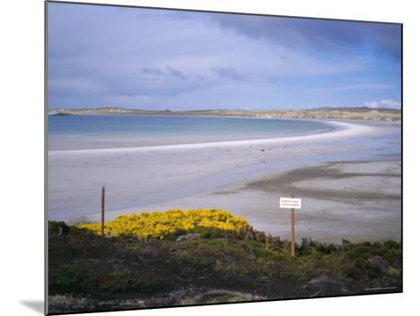 Mined Beach from the Falkland War, Near Stanley, Falkland Islands, South America-Geoff Renner-Mounted Photographic Print