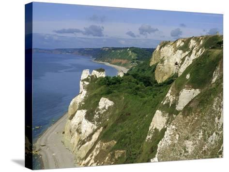 Hoskon Landslip, Beer Head, from Coastal Path, East Devon, England, UK-Michael Black-Stretched Canvas Print