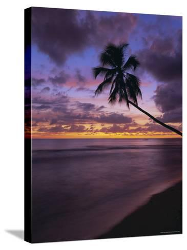Gibbes Bay at Sunset, Barbados, West Indies, Caribbean, Central America-Gavin Hellier-Stretched Canvas Print