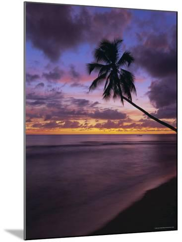 Gibbes Bay at Sunset, Barbados, West Indies, Caribbean, Central America-Gavin Hellier-Mounted Photographic Print