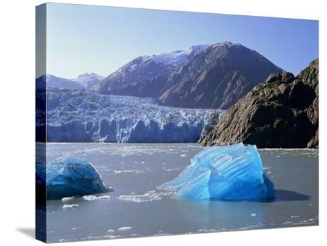 Tracy Arm Glacier, Alaska, USA-Gavin Hellier-Stretched Canvas Print