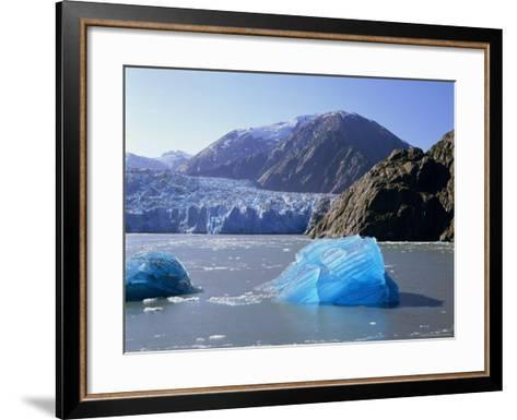Tracy Arm Glacier, Alaska, USA-Gavin Hellier-Framed Art Print