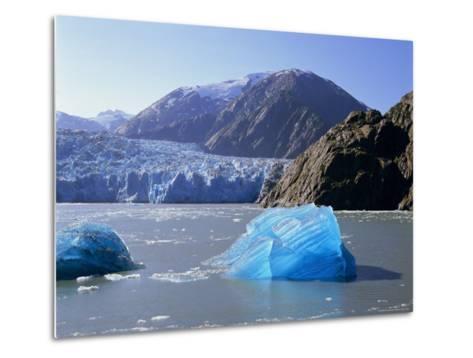 Tracy Arm Glacier, Alaska, USA-Gavin Hellier-Metal Print
