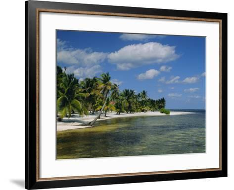 Main Dive Site in Belize, Ambergris Caye, Belize, Central America-Gavin Hellier-Framed Art Print