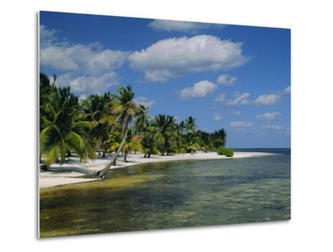 Main Dive Site in Belize, Ambergris Caye, Belize, Central America-Gavin Hellier-Metal Print
