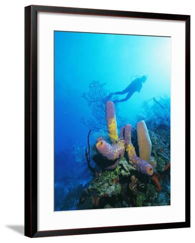 Coral Formations and Underwater Diver, Cozumel Island, Caribbean Sea, Mexico-Gavin Hellier-Framed Art Print