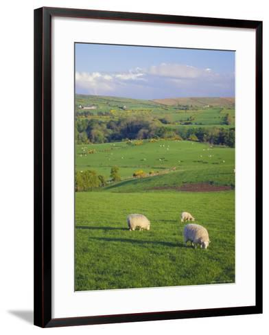 Farming Countryside, County Antrim, Northern Ireland-Gavin Hellier-Framed Art Print