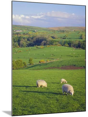 Farming Countryside, County Antrim, Northern Ireland-Gavin Hellier-Mounted Photographic Print