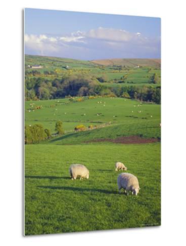 Farming Countryside, County Antrim, Northern Ireland-Gavin Hellier-Metal Print