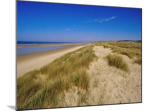 Dunes at Hardelot Plage, Near Boulogne, Pas-De-Calais, France, Europe-David Hughes-Mounted Photographic Print