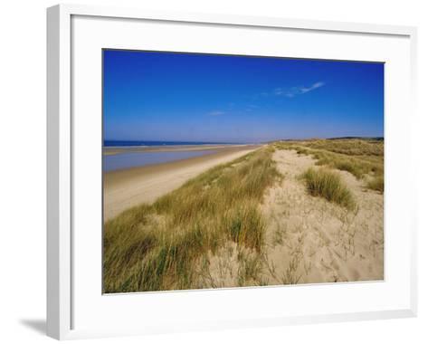 Dunes at Hardelot Plage, Near Boulogne, Pas-De-Calais, France, Europe-David Hughes-Framed Art Print
