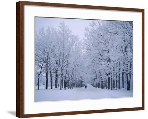 Catherine's Park in February, Tsarske Seloe (Puskin), St. Petersburg, Russia-Anthony Waltham-Framed Art Print
