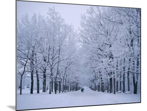 Catherine's Park in February, Tsarske Seloe (Puskin), St. Petersburg, Russia-Anthony Waltham-Mounted Photographic Print
