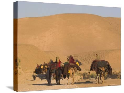 Kuchie Nomad Camel Train, Between Chakhcharan and Jam, Afghanistan, Asia-Jane Sweeney-Stretched Canvas Print