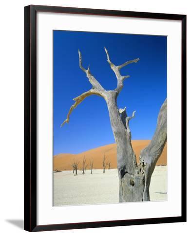 Dead Trees and Sun-Baked Pan, Dead Vlei, Namib Naukluft Park, Namibia-Lee Frost-Framed Art Print