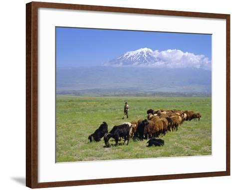 Herd of Goats and Goatherder in the Plains Beneath Mount Ararat, Turkey, Europe-Charles Bowman-Framed Art Print