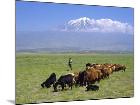Herd of Goats and Goatherder in the Plains Beneath Mount Ararat, Turkey, Europe-Charles Bowman-Mounted Photographic Print