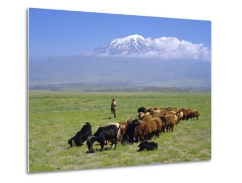 Herd of Goats and Goatherder in the Plains Beneath Mount Ararat, Turkey, Europe-Charles Bowman-Metal Print
