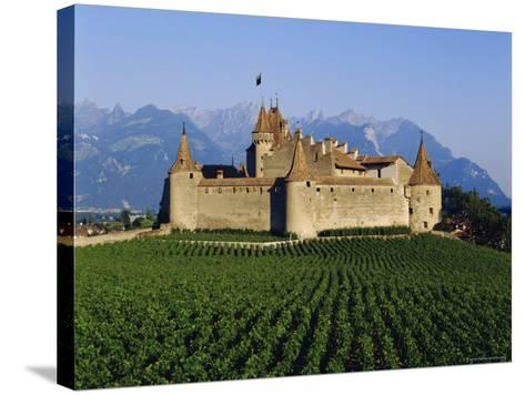 Aigle Chateau and Vineyard, Near Lac Leman, Switzerland-Adina Tovy-Stretched Canvas Print