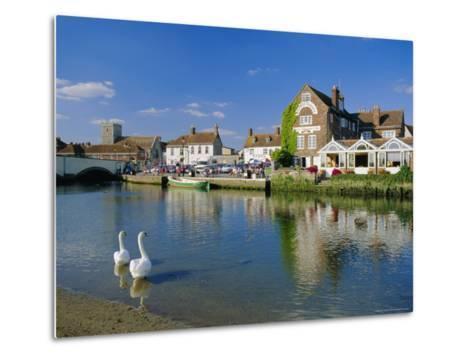 Swans on the River Frome, Wareham, Dorset, England, UK-Ruth Tomlinson-Metal Print