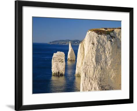 Handfast Point, Clifftop View Showing the Pinnacles, Early Morning, Studland, Dorset, England-Ruth Tomlinson-Framed Art Print