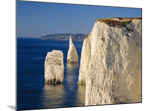 Handfast Point, Clifftop View Showing the Pinnacles, Early Morning, Studland, Dorset, England-Ruth Tomlinson-Mounted Photographic Print