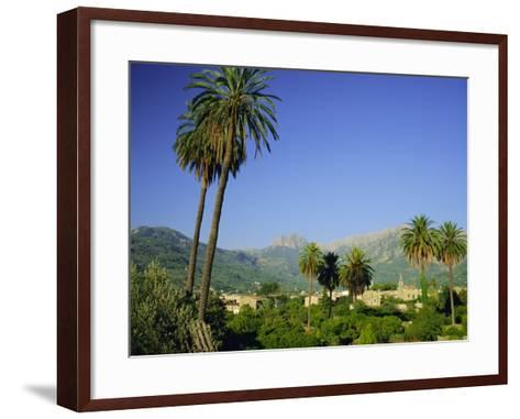 Puerto Pollensa, Majorca (Mallorca), Balearic Islands, Spain, Europe-Ruth Tomlinson-Framed Art Print