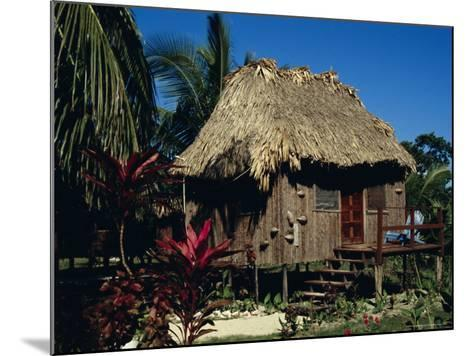 Typical Thatched Wooden Hut on the Island, Caye Caulker, Belize, Central America-Christopher Rennie-Mounted Photographic Print