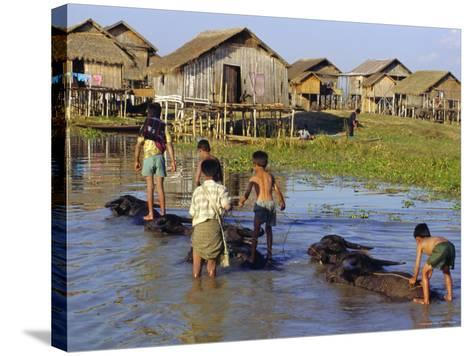 Children Riding Water Buffaloes, Inle Lake, Myanmar, Asia-Upperhall Ltd-Stretched Canvas Print