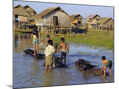 Children Riding Water Buffaloes, Inle Lake, Myanmar, Asia-Upperhall Ltd-Mounted Photographic Print