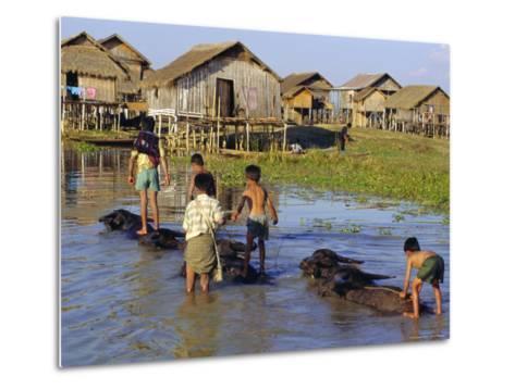 Children Riding Water Buffaloes, Inle Lake, Myanmar, Asia-Upperhall Ltd-Metal Print