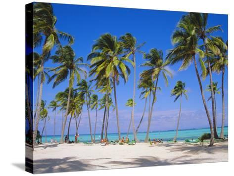 Dominican Republic, Punta Cana, West Indies-Jeremy Lightfoot-Stretched Canvas Print