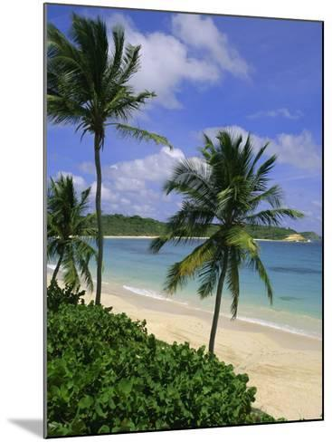 Palm Trees and Beach, Half Moon Bay, Antigua, Leeward Islands, Caribbean, West Indies-John Miller-Mounted Photographic Print