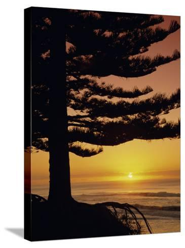 Sunrise, Pine Beach, Gisborne, East Coast, North Island, New Zealand, Pacific-Dominic Webster-Stretched Canvas Print