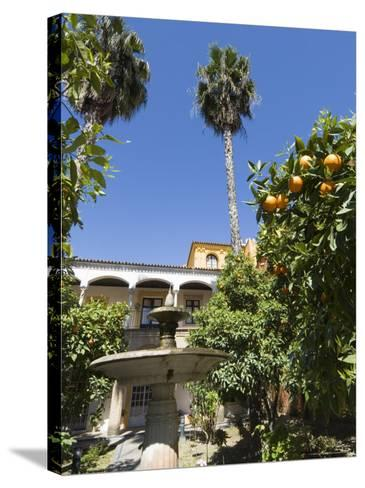 The Gardens of the Real Alcazar, Santa Cruz District, Seville, Andalusia (Andalucia), Spain, Europe-Robert Harding-Stretched Canvas Print