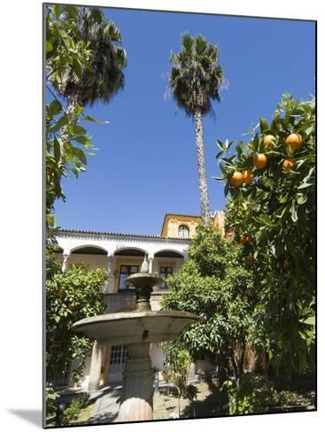 The Gardens of the Real Alcazar, Santa Cruz District, Seville, Andalusia (Andalucia), Spain, Europe-Robert Harding-Mounted Photographic Print