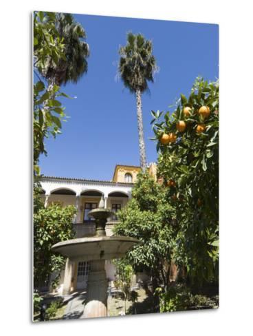 The Gardens of the Real Alcazar, Santa Cruz District, Seville, Andalusia (Andalucia), Spain, Europe-Robert Harding-Metal Print