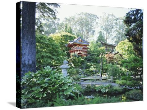 The Japanese Tea Garden, Golden Gate Park, San Francisco, California, USA-Fraser Hall-Stretched Canvas Print