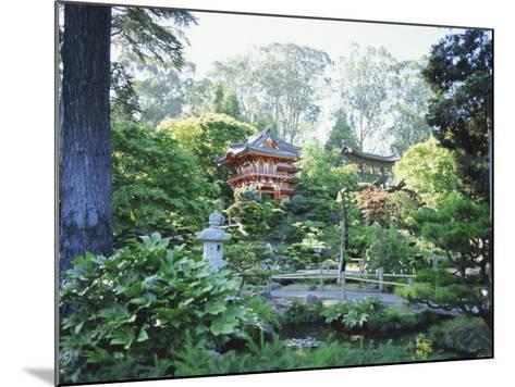 The Japanese Tea Garden, Golden Gate Park, San Francisco, California, USA-Fraser Hall-Mounted Photographic Print