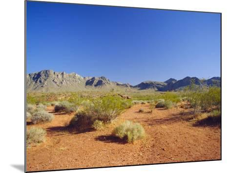 Valley of Fire State Park, Mojave Desert, Nevada, USA-Fraser Hall-Mounted Photographic Print
