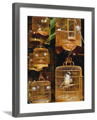 The Bird Market, Hong Lok Street, Mongkok, Kowloon, Hong Kong, China-Fraser Hall-Framed Art Print